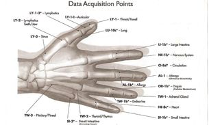 Chart of Testing Points | Hand